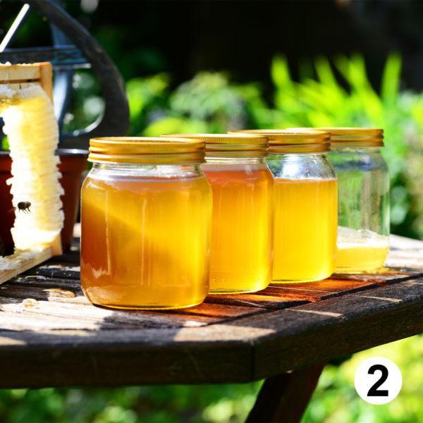 Maquette d'autocollants produits apiculteur